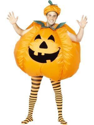 Inflatable Pumpkin Adult Costume](Adults Pumpkin Costume)