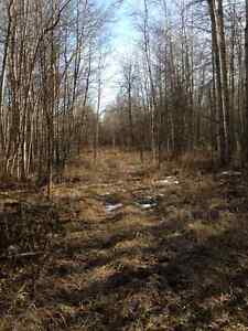 60 secluded acres  fully treed   15 minutes north of lake Isle
