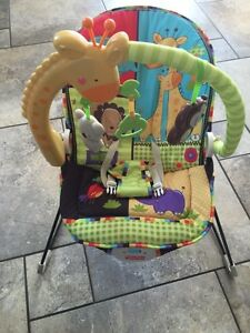 Fisher-Price Luv U Zoo Playtime Bouncer and vibrating chair