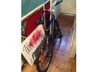 Mountain bike cheap needs to go