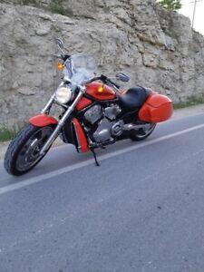 2004 Harley V Rod