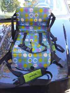 Munchkin adjustable dining room booster seat.
