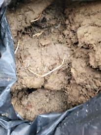 Free bags Soil