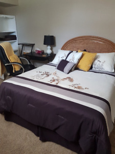 Available Oct 1st Furnished Bedroom in White City