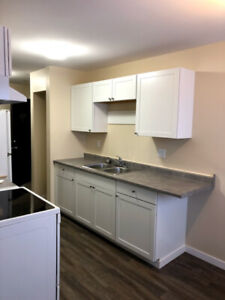 Newly renovated 2 bedroom 1 bath with a view!