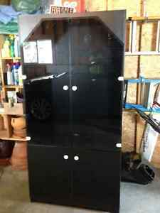 Black China Cabinet with Light