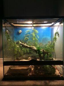 Ball Python and Aquarium