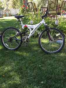 Norco Screamer (boy/men)