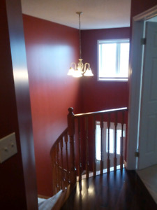 CHEAP PROFESSIONAL PAINTING