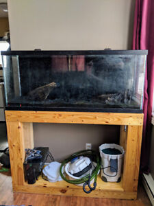 55g AQUARIUM w/ stand + 2 filters, heaters & plant substrate