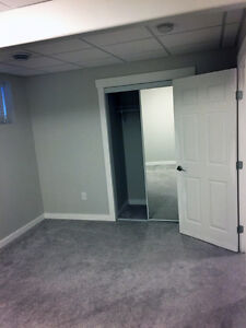 Jan1-Brand new,entire basement suite with shared Kitchen&Laundry Edmonton Edmonton Area image 4