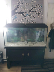 65 gal with stand and accessories make resonable offer