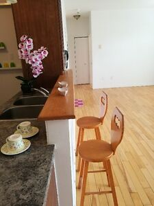 2 bedrooms Condo 1 minute to Metro Cote-vertu