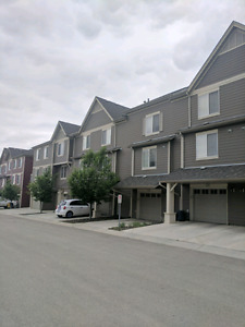 Available August 1st  Ellerslie Townhome