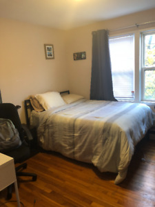 1 Bedroom available for rent Jan to Aug, in South End $700/month