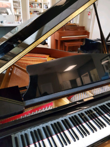 Baby Grand Piano Buy Or Sell Pianos Amp Keyboards In