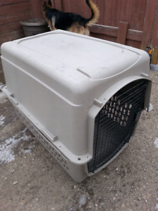 Large dog crate $60 obo