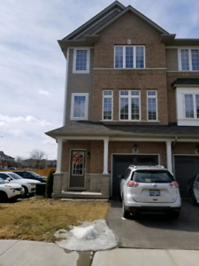 3 bdr, waterdown corner town for rent