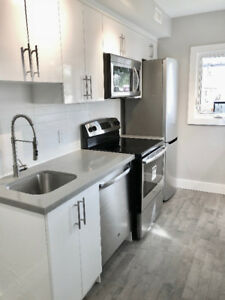2 Bedroom Brand New Main floor Apartment (Dupont/Symington)