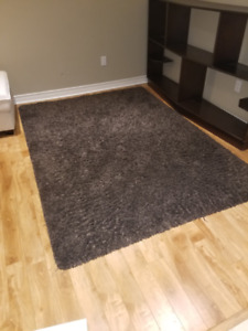 Brown area Rug  5'x7'