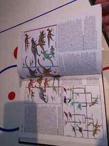 Complete Grolier Encyclopedia 1986 +Popular Science set West Island Greater Montréal image 5
