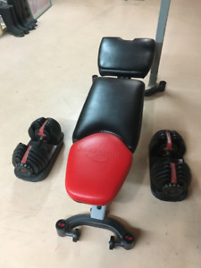 Bowflex Bench and Weights (52.5 lb adjustables)