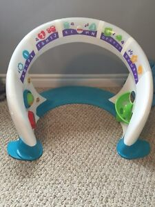 Fisher Price Smart Play Space