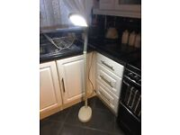 Floor stand flexible lamp £20 good con b on Avon