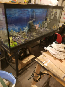 110 gallon fish tank with all supplies
