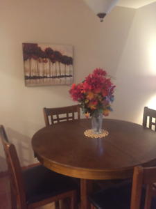 LARGE BEAUTIFUL MESA CONDO WINTER RENT 20 MINS SKY HARBOR AIRPT