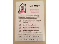 Mrs Mops Domestic house Cleaning and Ironing service