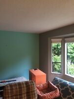 Painting Services at affordable Rates.