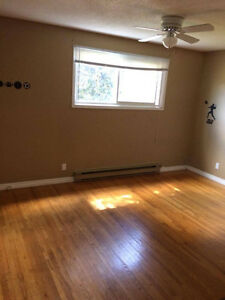 3 large rooms to Rent
