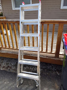 6 foot Extension/Step Ladder
