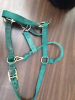 Horse Halters for sale
