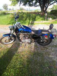 2008 Harley Davidson XL1200 Custom with only 11000 miles