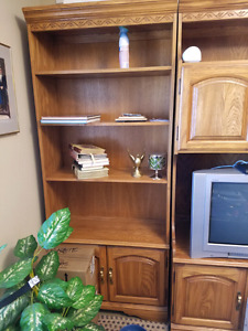 Wall unit with TV space.