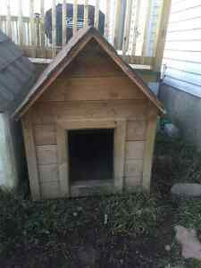 Home Depot Dog house For sale and Larger cage type Kennel