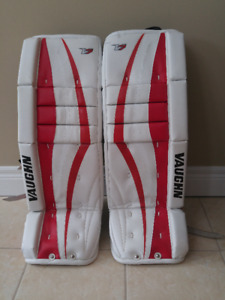 Youth Goalie Pads & Chest Protector