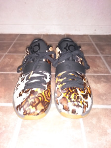 KD 7 Longhorn State