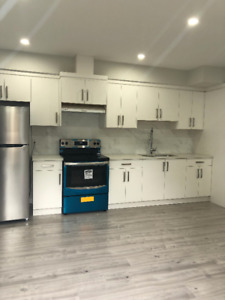 2 BEDROOM BASEMENT SUITE ! BRAND NEW !