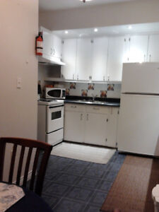 Clean, Quiet, Central, Furnished 1 Bedroom for Rent - Feb 1