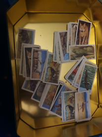 Collectable cards from tea