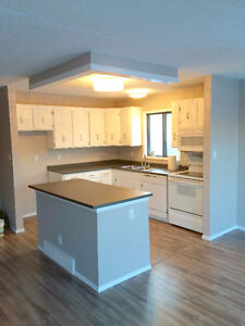 Renovated 3 Bedroom Main Floor House in Lawson Heights