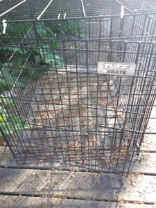 --->Tuff Crate Large Metal Dog Crate for sale