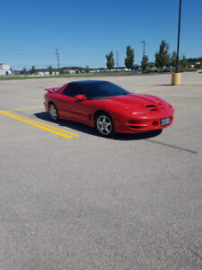 2002 collectors car trans am ws6