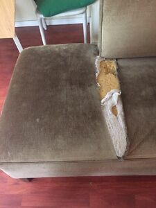 Couch  Downtown-West End Greater Vancouver Area image 4
