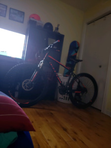 Mountain bike 650$
