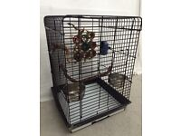 Parrot cage fit any birds
