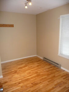 one bedroom apt ALL INCLUSIVE.    Close to YMCA